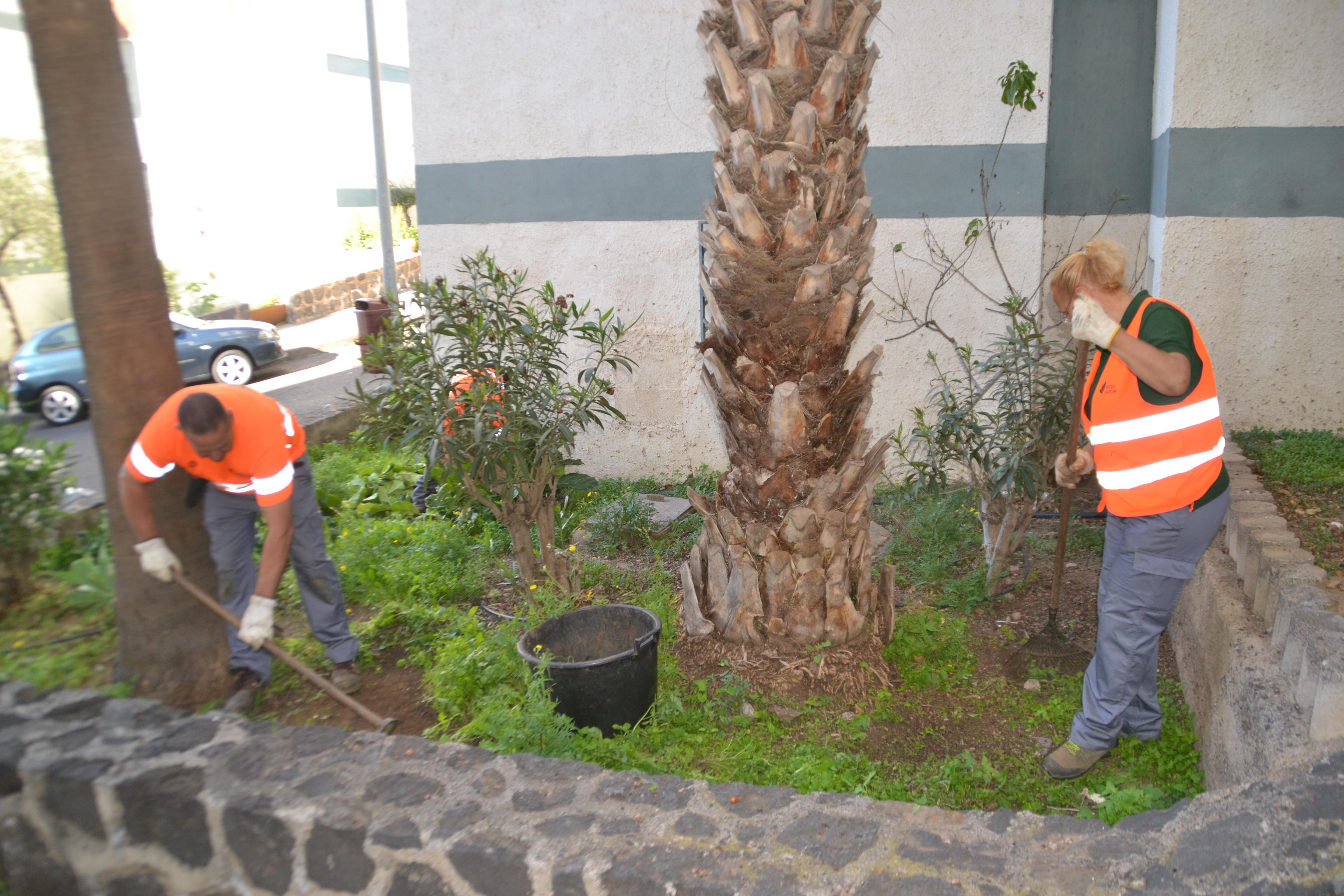 El Ayuntamiento de La Laguna inicia el miércoles (24 de abril) un plan de acción de limpieza en San Luis Gonzaga